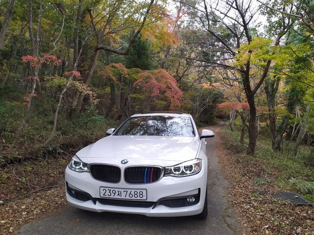 BMW GT 320d  2016년 완전무사고 - 0